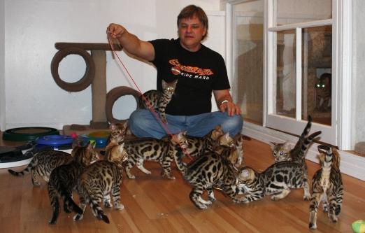 carl-and-kitties
